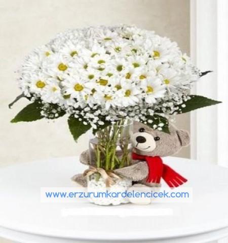 Erzurum Çiçek papatya ve ayıcık