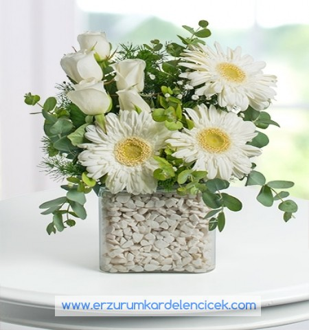 Erzurum Çiçek BEYAZ  GÖLGE