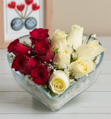 Erzurum Çiçek aşık ve zarif kırmızı güller