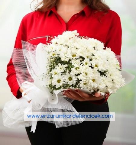 Erzurum Çiçek BEYAZ PAPATYALAR