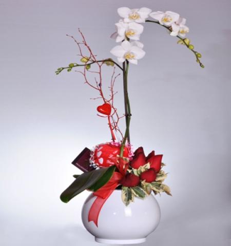 Erzurum Çiçek TEK DAL   ORKİDE VE KIRMIZI GÜLLER