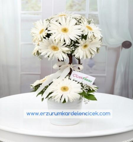Erzurum Çiçek FARKINIZI HİSSETTİRİN