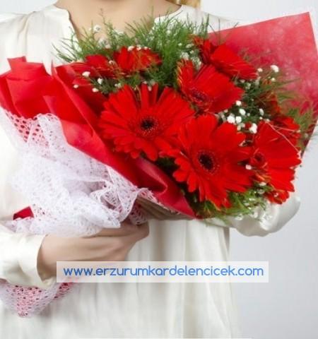 Erzurum Çiçek KIRMIZI GELBERA BUKETİ